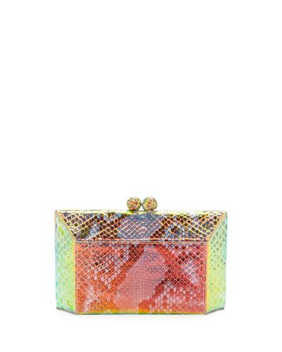 Gramercy Ombre Python Clutch Bag