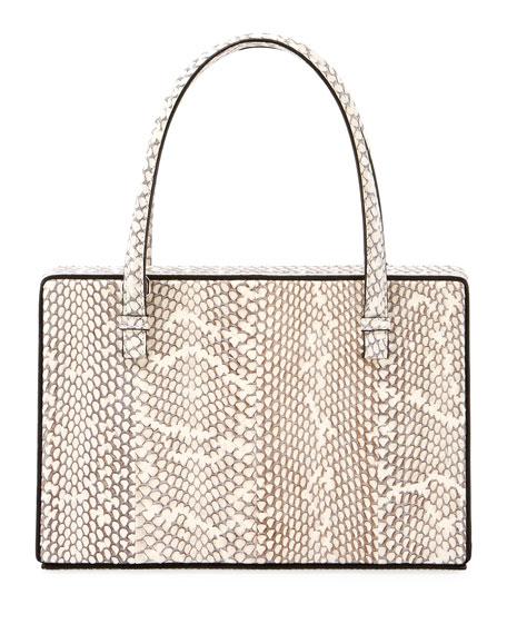 Cobra Framed Box Bag