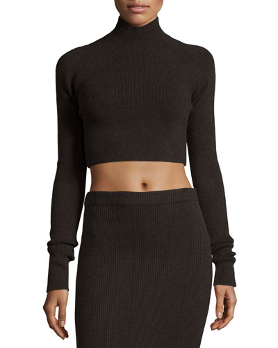 Ribbed Turtleneck Crop Sweater, Dark Oak