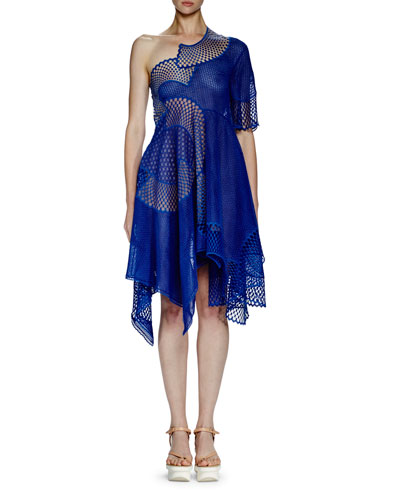 Noah One-Shoulder Mesh-Embroidered Dress, Cobalt