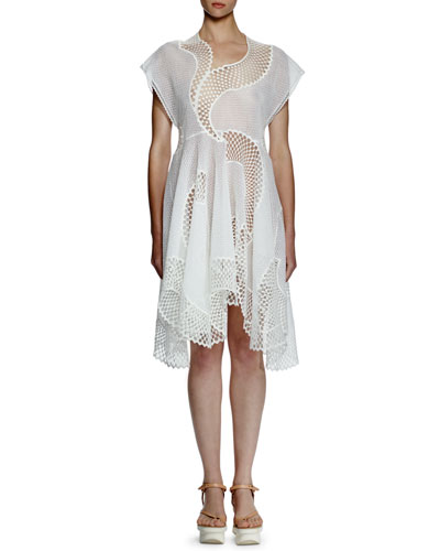 Clotilde Mesh-Embroidered Dress, Pure White