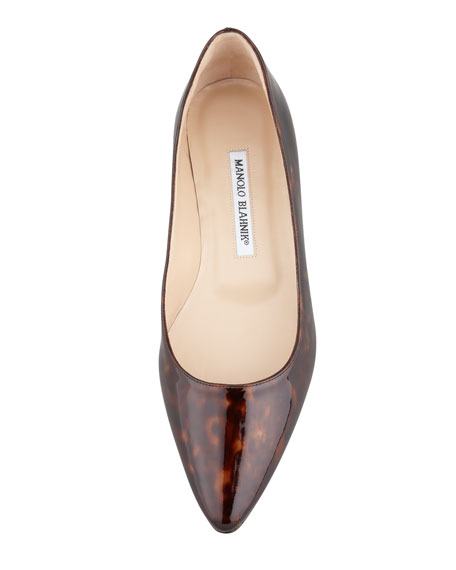 Titto Pointed-Toe Ballerina Flat, Brown