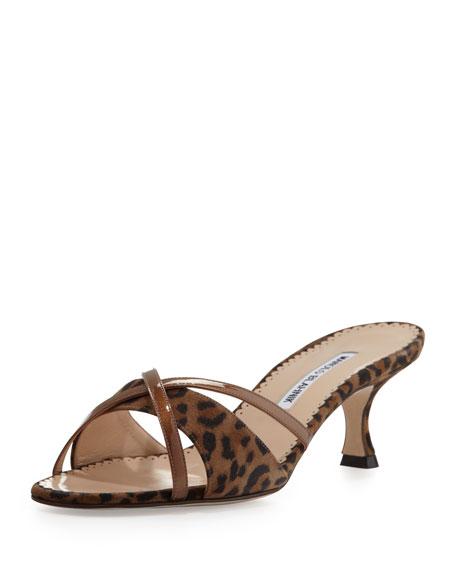 Betsy Suede Crisscross Sandal, Leopard