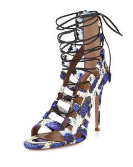 Aquazzura Amazon Lace-Up Snakeskin Sandal, Blue/White