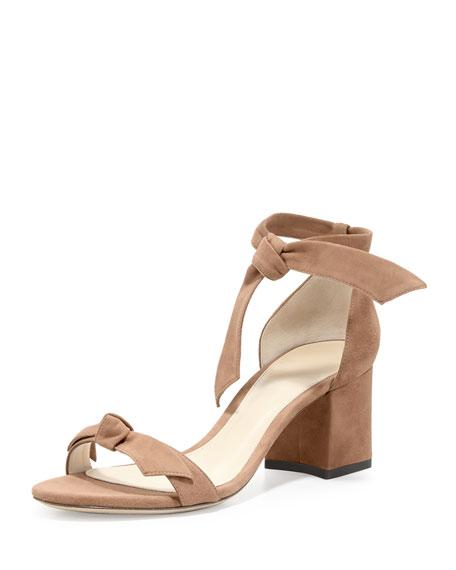 Clarita Suede Block-Heel Sandal