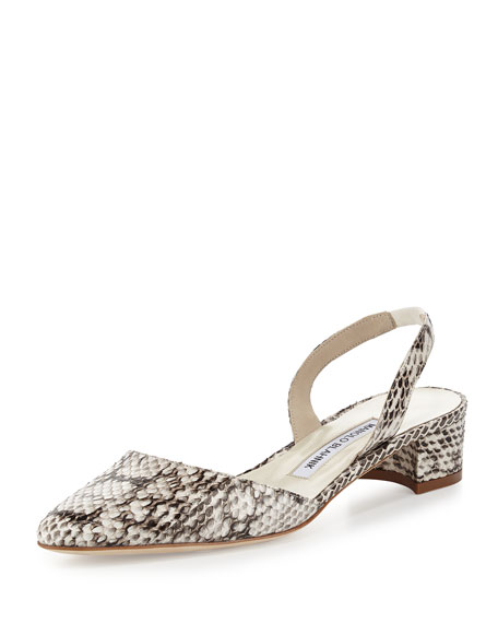 Manolo Blahnik Snakeskin Slingback Pumps buy cheap visa payment from china for sale cheap newest jef7M1he7