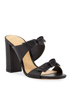 Nolita Block Heel Mule Sandals by Alexandre Birman