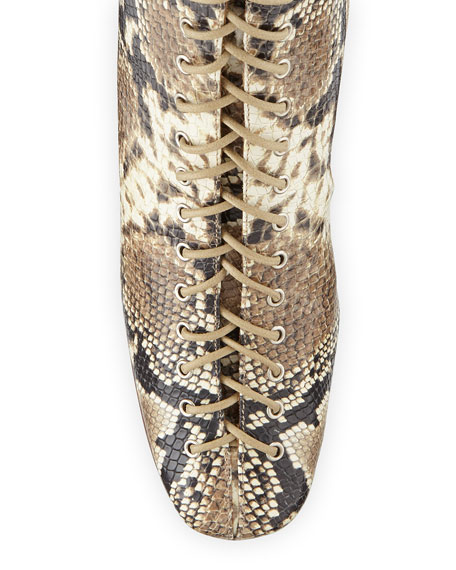 Becca Snake-Print Laced Booties