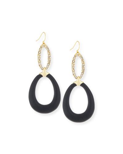 Crystal Encrusted Lucite Drop Earrings