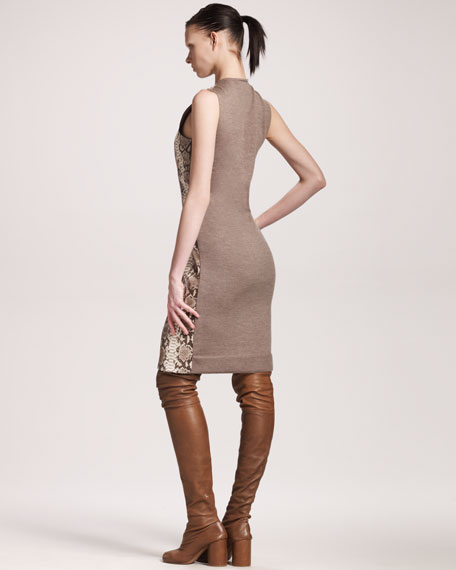 Python Knit Shift Dress