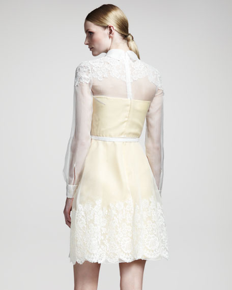 Lace-Trim Organza Dress