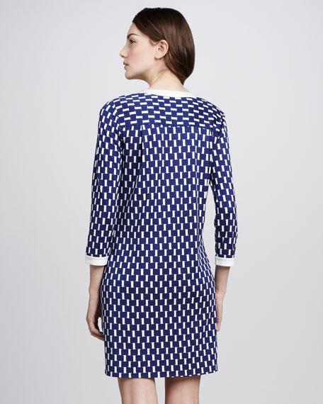 Achelle Printed Shift Dress