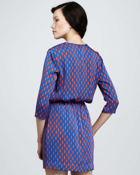 Rachel Printed Georgette Dress