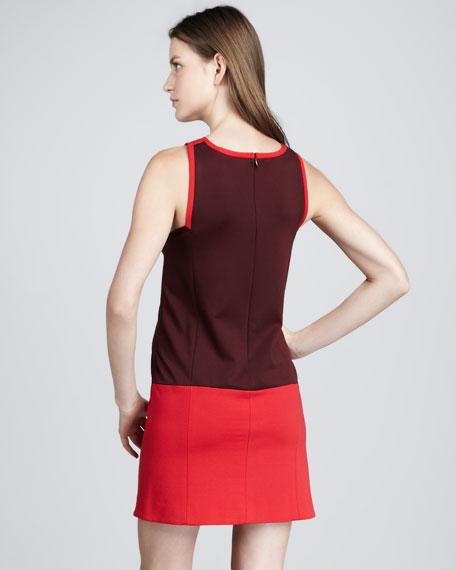 Colorblock Dress