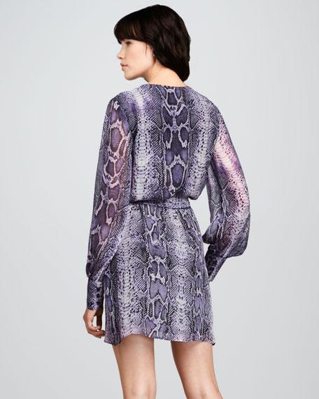 Christy Snake-Print Dress