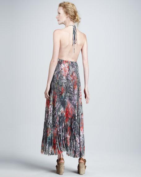 Laney Floral-Print Maxi Dress