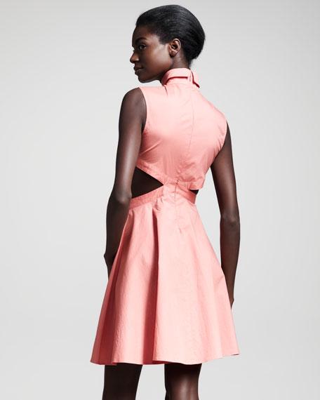Austin Cutout Dress