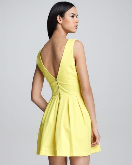 Pamela Pleated Poplin Dress