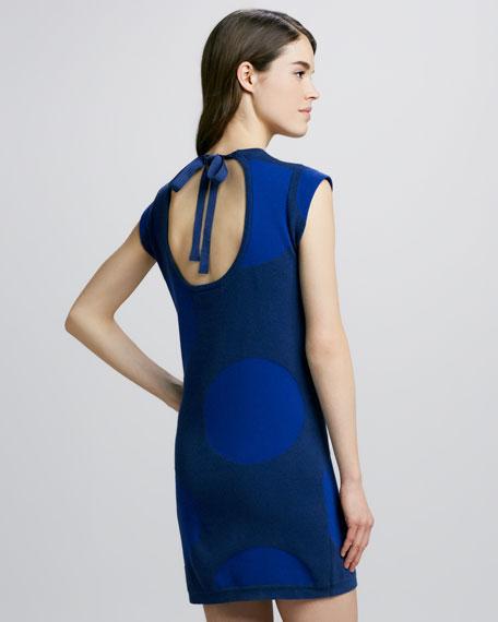 Daphne Dot Sweater Dress