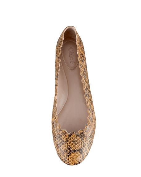 Scalloped Snakeskin Ballerina Flat