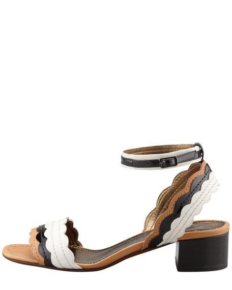 Chunky-Heel Scalloped Leather Sandal, Black/White