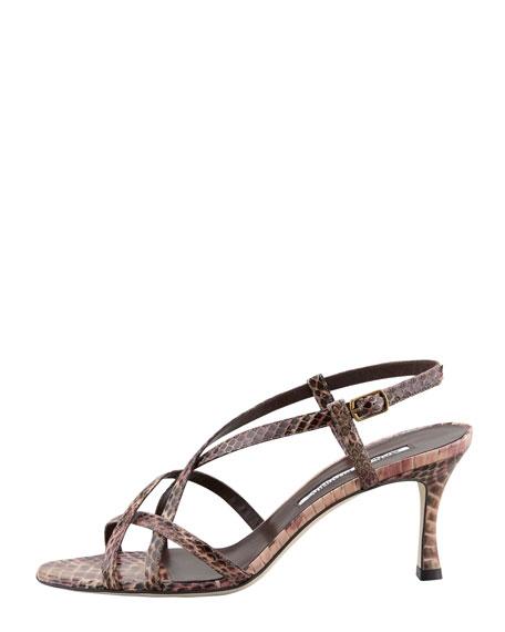 Scarsomod Strappy Sandal