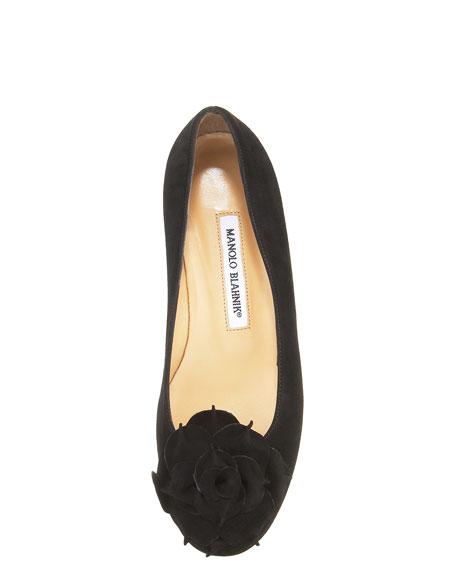 Gisella Suede Flower Ballerina Flat, Black