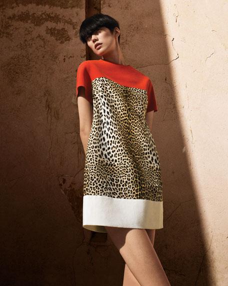 Colorblock Leopard-Print Shift Dress