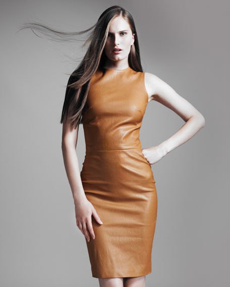 Sleeveless Stretch-Leather Dress