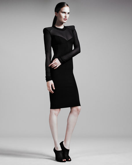 Sheer-Paneled Sheath Dress
