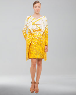 Akris Reed-Print Double-Face Coat & Dress
