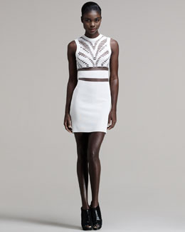 Alexander Wang Engineered Zebra-Cutout Tank Dress