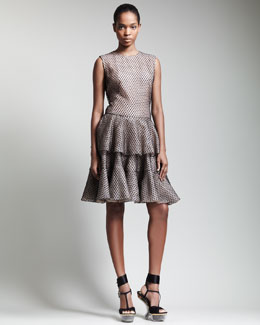 Alexander McQueen Tiered Lace Tulle Dress
