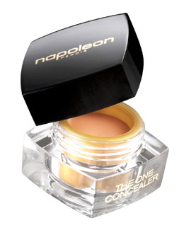 Napoleon Perdis The One Cream Concealer