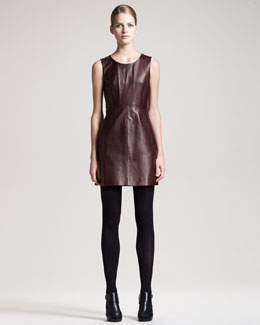 Diane von Furstenberg Carpreena Leather Dress
