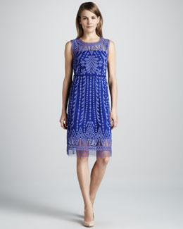 Catherine Malandrino Embroidered Favorite Sheer-Trim Dress, Galaxy