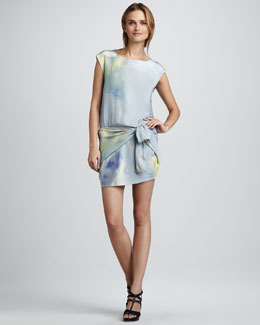 Theyskens' Theory Dinta Watercolor Dress