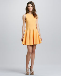 Tibi Jewel-Neckline Full-Skirt Dress