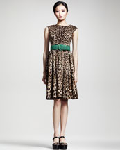 Dolce & Gabbana Full-Skirted Leopard-Print Dress & Woven Belt