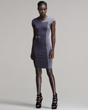 Alexander Wang Tone-on-Tone Intarsia Sheath Dress