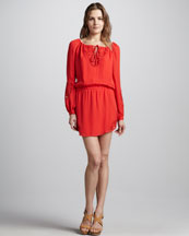 Haute Hippie Embroidered Silk Dress