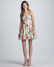 Alice + Olivia Fleur Printed Bustier Dress