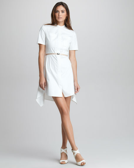 Flirt Pintucked Cotton Dress