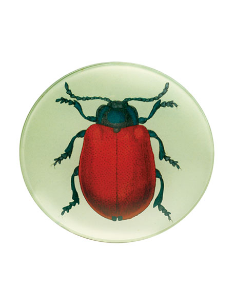 Red Beetle Tray