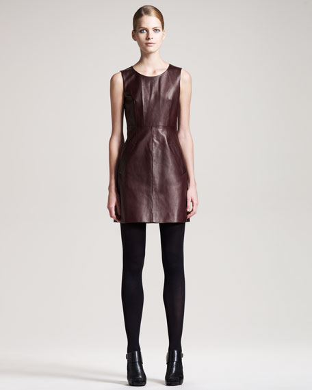 Carpreena Leather Dress