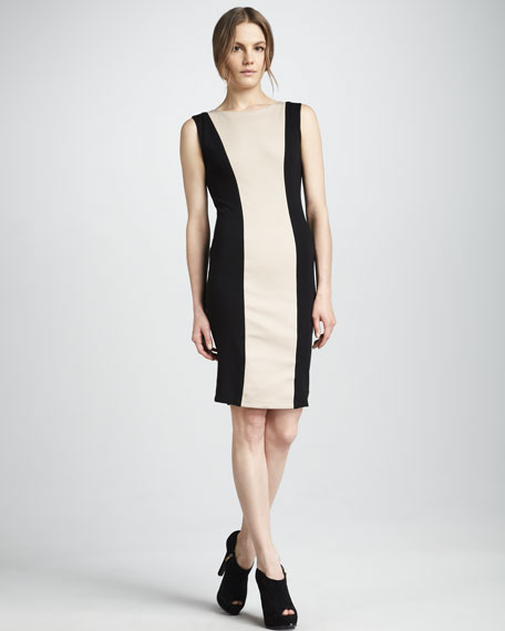 Amena Fitted Colorblock Dress