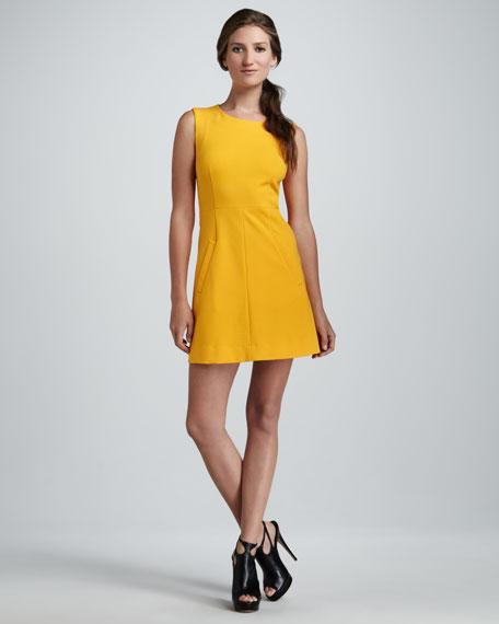 Carpreena Knit Minidress