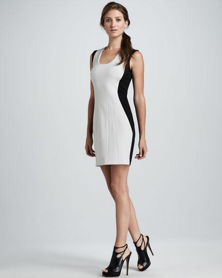 Carmelle Sheath Dress
