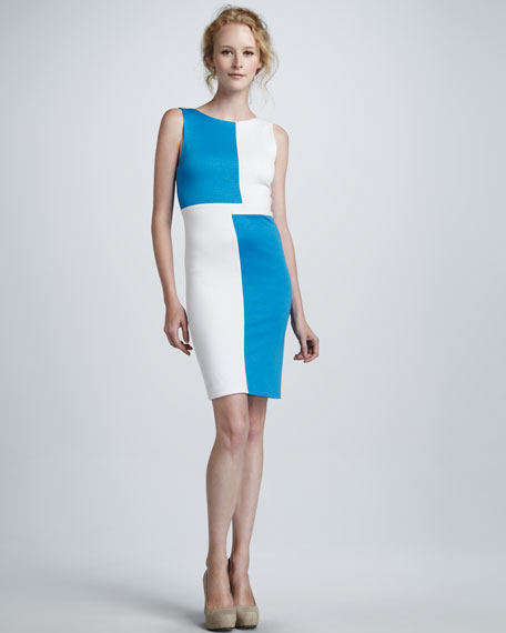 Carina Sleeveless Colorblock Dress