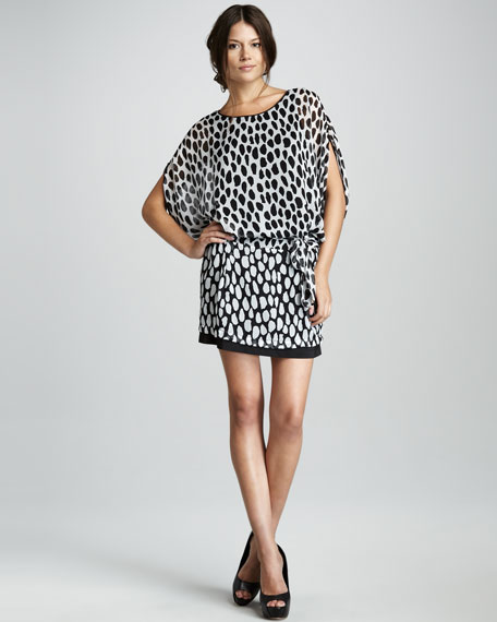 Robyn Dot-Print Chiffon Dress
